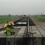  Auschwitz Birkenhau