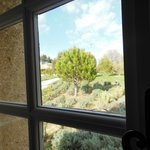  View out one of the windows.... lavender in early spring