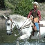  Cowpoke Crossing The River