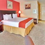 Hollywood Holiday Inn Express Queen Bed Guest Room
