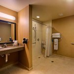 Accessible Shower Stall