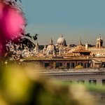  View From Roof Graden