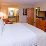 Holiday Inn Airport @ Gulf Coast Town Center King Bed Guest Room