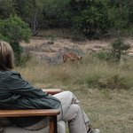  Watching impala on the deck of our hut