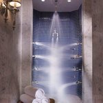  Spa Silver TAG Shower