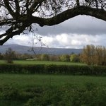  fields and pasture from Clonacody