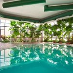 Tropical Indoor Pool