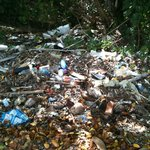  GARBAGE-Over the walk way to the island. Three feet deep in places