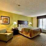 Photo de Comfort Inn & Suites St. Pete/Clearwater Airport