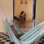 Lovely, lazy hammocks