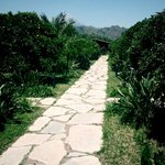  Garden path leading to Lodges