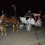 Our after dinner Carriage Ride around the Premises
