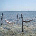  Water hammocks