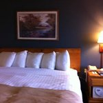 Φωτογραφία: AmericInn Lodge & Suites Eagle