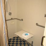 Handicapped Accessible roll-in shower