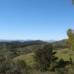 Great views of the Bay in Tilden Park