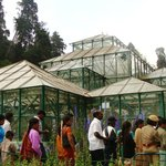 glass house at botanical garden ooty