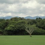 Ngong Hills at the end of Karen Blixen's garden