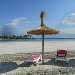 view beach Alcudia
