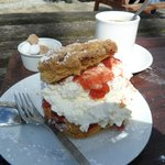 Scone with cream from Visitor Centre