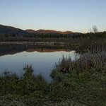  Beaver Pond
