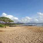  Beach in front of the Kauai Beach Villas.