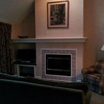 fireplace dvd tv all nice amenities in living space