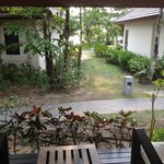  view from garden bungalow (on front row of garden bungalows)