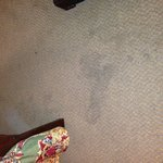  Stain on carpet