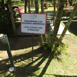  Sign on the grounds: Love Scenes Forbidden