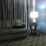 Embassy Suites St. Louis - Airport照片