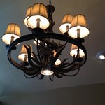Loved the elk antler chandelier in my cabin.