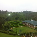 View of the mini tea factory from our room