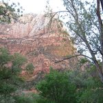 Views of Zion's canyons are impressive