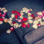  Rose petals in our fountain