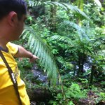 Chachagua Rainforest  - Cristian the environmentalist
