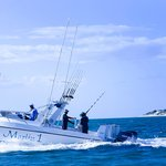 Sailfish Dhow Safaris