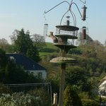 Bilde fra Pippin Bed and Breakfast Glastonbury