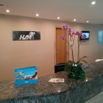  HSM Atlantic Park - Our Reception / Nuestra Recepcin