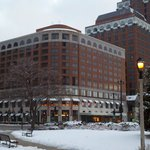  Daytime view of the hotel from the park across the street