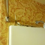 Black mold in shower.