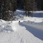 Bergun Filisur Tourism -Sled Track