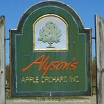 Alyson&#39;s Orchard