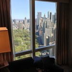  stunning central park view room