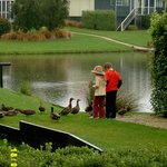 My kids feeding the ducks in the pond at our back door.