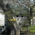  tree house for kids under 9