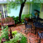 Area behind the main house on a rainy day.