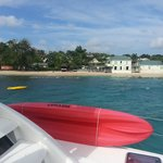 Seaduced Luxury Catamaran - Private Tours