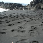 the black sand beach just up the road.
