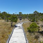  Bog Walk - a short drive from the resort